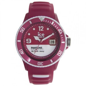 RELOJ ANALOGICO DE UNISEX ICE PAN.BC.JAZ.U.S.13 Ice watch