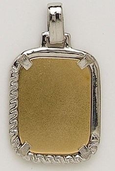 PENDANT NECKLACE GOLD - OWN - 1608-17X22