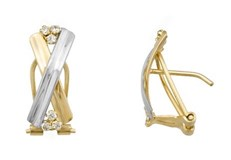 EARRING EARRING BICOLOR - OWN - 2895-OMEGA