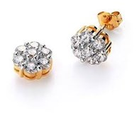 EARRINGS VICEROY GOLD 60000E100-96
