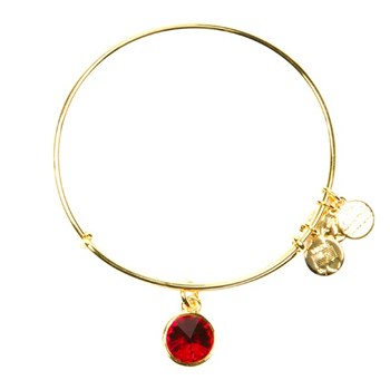 ALEX AND ANI A12EB246RG POSITIVE ENERGY BRACELET