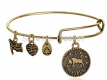 ALEX AND ANI, ENERGY BRACELET POSITIVE GOLDEN TAURUS TAURO DORADA