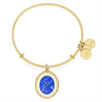 ALEX AND ANI POSITIVE ENERGY CELESTIAL WHEEL BRACELET READ RUEDA CELESTIAL LEO