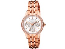 WATCH ANALOG WOMEN ELIXA E053-L312