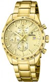 WATCH FESTINA MAN F20266/1