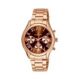 WATCH RADIANT REF RA290207 8431242516813