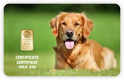 GIFT CARD GOLD HUND 01 PIM