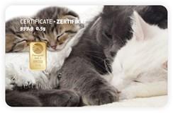 Katzen-mehrere or de carte cadeau PIM